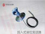 [实用型]3151投入式液位变送器_高静压液位变送器
